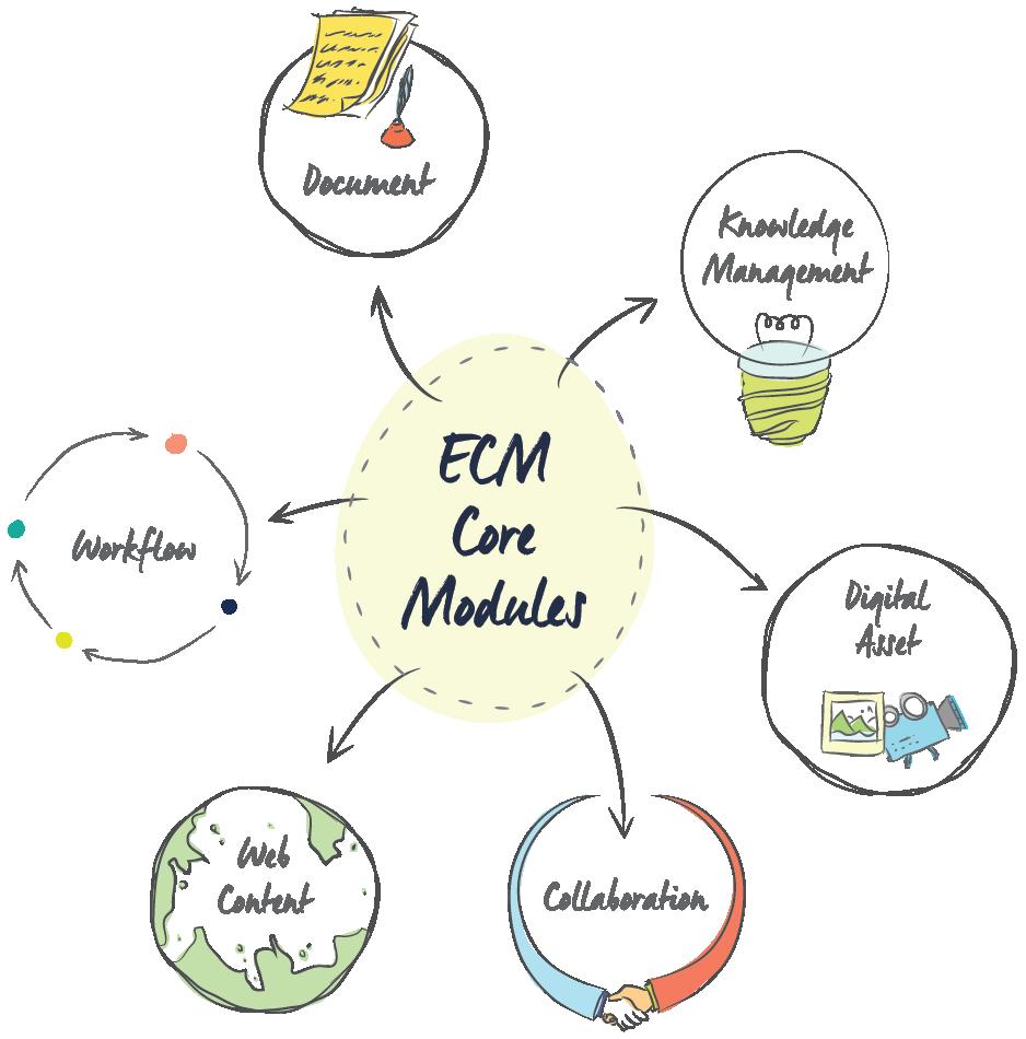 ECM diagram